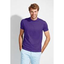 Camiseta en 37 colores regent sols 150 personalizada